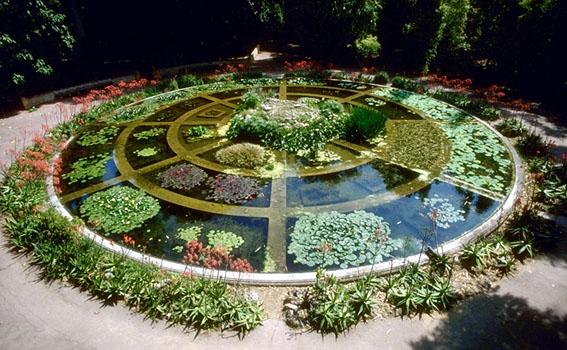 Piccolo quanto bellissimo giardino acquatico, un cerchio di 6-8 metri di diametro diviso a spicchi quadrati - sono piccole vasche chiuse piene d'acqua che racchiudono un tipo di pianta sono circa 24 al centro è più alto in questo punto arriva l'acqua che si riversa a cupola su tutte le altre vasche